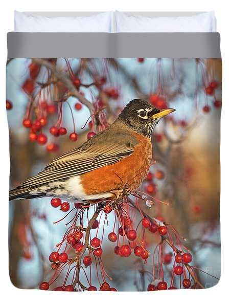 Duvet Cover featuring the photograph Robin.. by Nina Stavlund