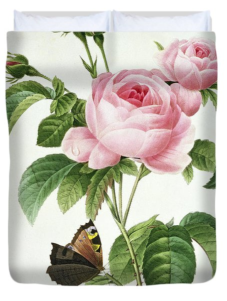 Rosa Centifolia Duvet Cover by Pierre Joseph Redoute