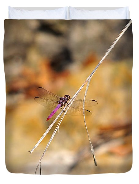 Duvet Cover featuring the photograph Fuchsia Fly by Al Powell Photography USA