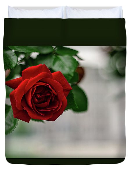 Roses In The City Park Duvet Cover