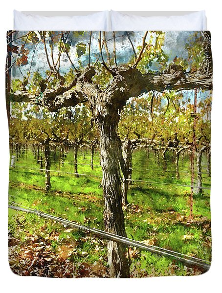 Rows Of Grapevines In Napa Valley Caliofnia Duvet Cover
