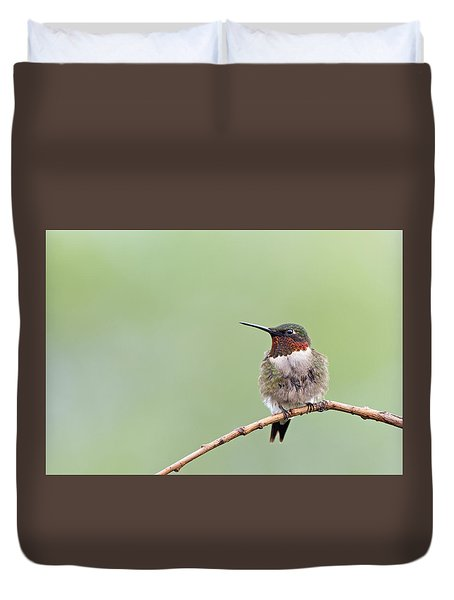 Ruby-throated Hummingbird Duvet Cover