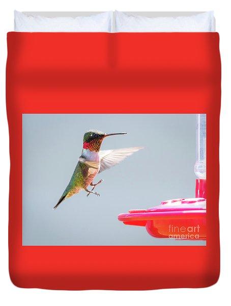 Ruby-throated Hummingbird  Duvet Cover by Ricky L Jones