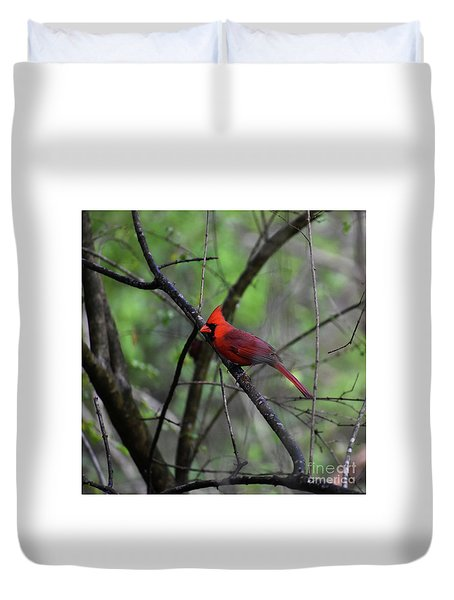 Duvet Cover featuring the photograph Saint Louis by Skip Willits