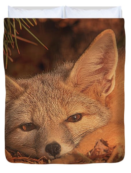 San Joaquin Kit Fox  Duvet Cover by Brian Cross