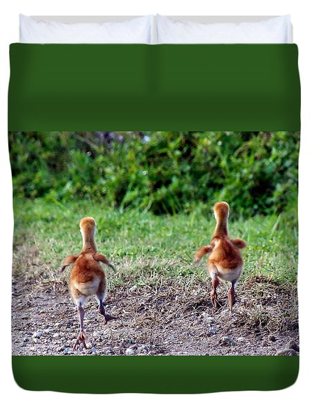 Sandhill Crane Chicks 000 Duvet Cover