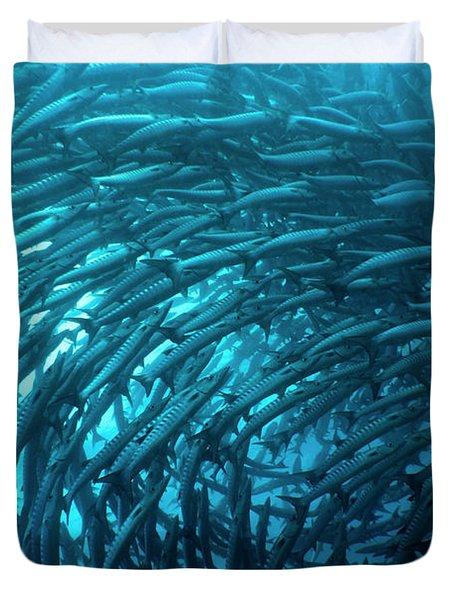 School Of Barracudas Underwater Duvet Cover by MotHaiBaPhoto Prints