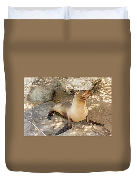 Sea Lion On The Beach, Galapagos Islands Duvet Cover