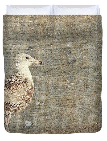 Seagull - Jersey Shore Duvet Cover