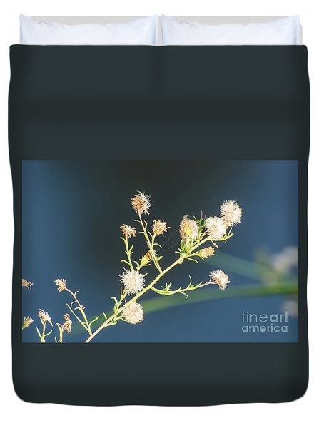 Seed Pod Duvet Cover by Donna Brown