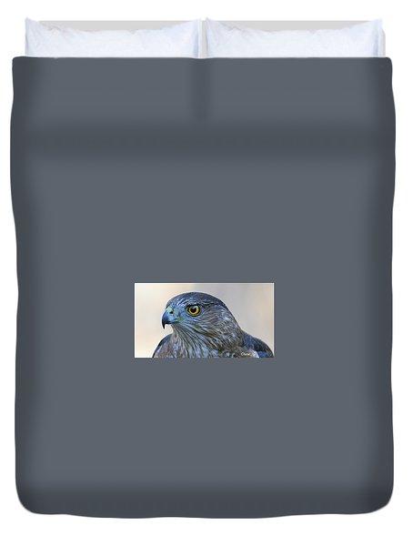 Sharp-shinned Hawk Duvet Cover