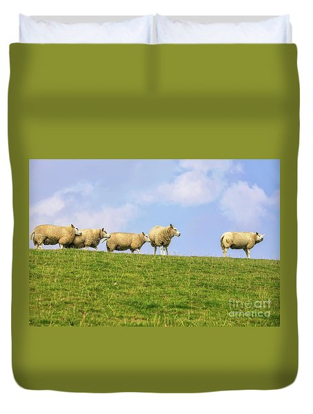 Duvet Cover featuring the photograph Sheep On Dyke by Patricia Hofmeester