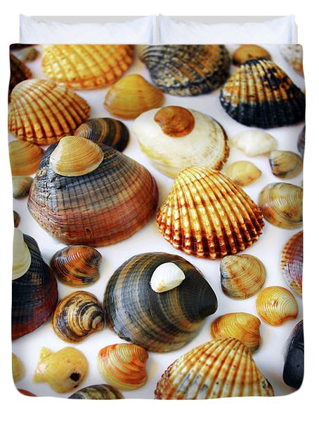 Shell Background Duvet Cover by Carlos Caetano