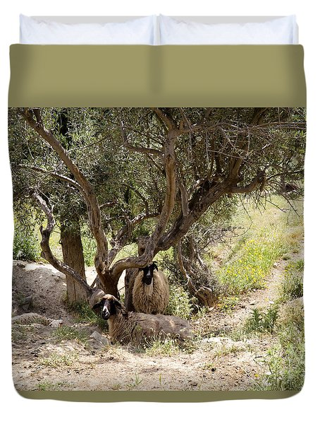 Duvet Cover featuring the photograph Sheltering  by Shirley Mitchell