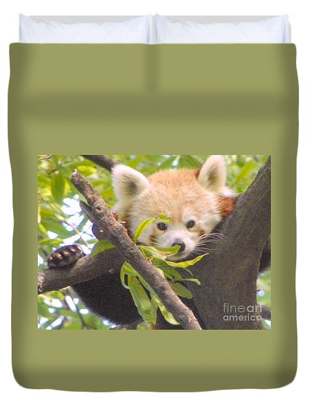 Shy Red Panda Duvet Cover