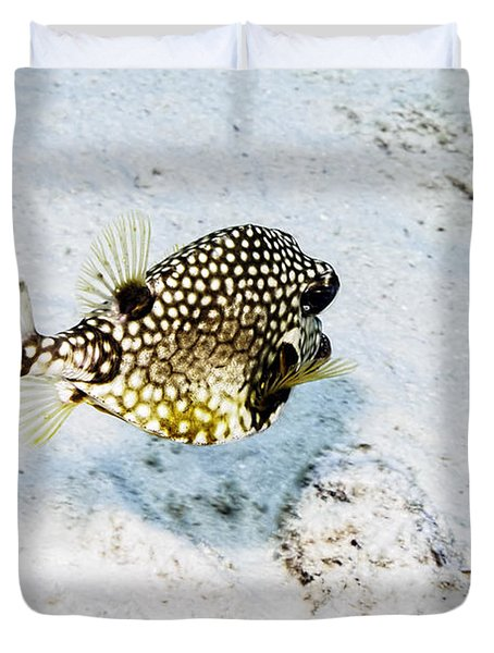 Smooth Trunkfish Duvet Cover