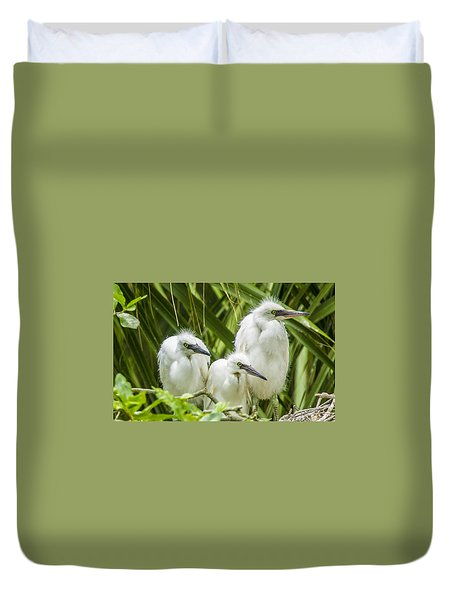 Duvet Cover featuring the photograph Snowy Egret Chicks by Paula Porterfield-Izzo