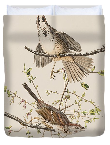 Song Sparrow Duvet Cover by John James Audubon