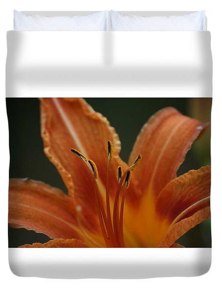 Spider Lily Duvet Cover by Cathy Harper
