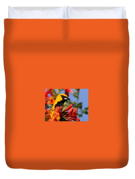 Spot Breasted Oriole Duvet Cover