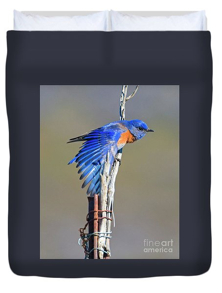 Spread The Wings Duvet Cover by Mike Dawson