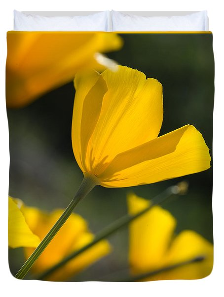 Spring Poppies Duvet Cover by Sue Cullumber