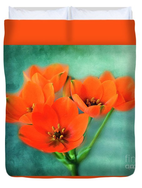 Duvet Cover featuring the photograph Star Of Bethlehem by Jutta Maria Pusl