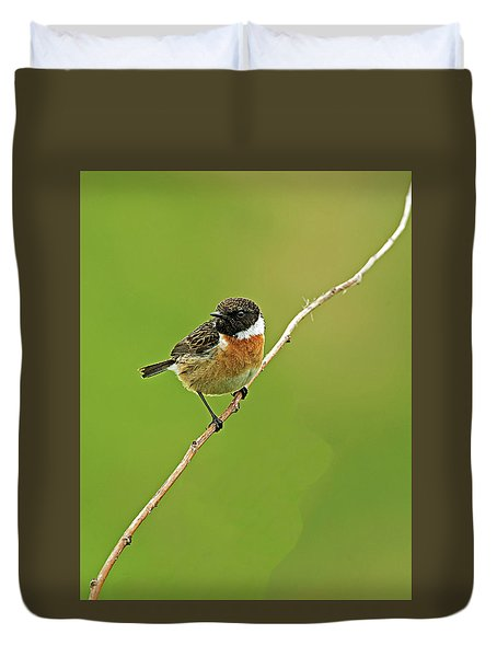 Stonechat Duvet Cover by Paul Scoullar