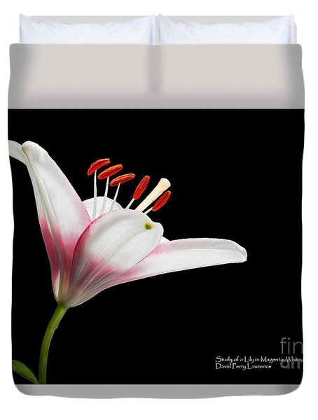 Duvet Cover featuring the photograph Study Of A Lily In Magenta, White, And Red #2 By Flower Photographer David Perry Lawrence by David Perry Lawrence