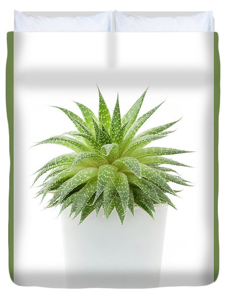 Duvet Cover featuring the photograph Succulent Plant by Elena Elisseeva