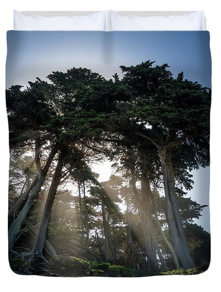 Sunbeams From Large Pine Or Fir Trees On Coast Of San Francisco  Duvet Cover by Steven Heap