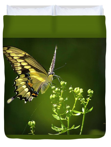 Duvet Cover featuring the photograph Elegant Swallowtail Butterfly by Christina Rollo