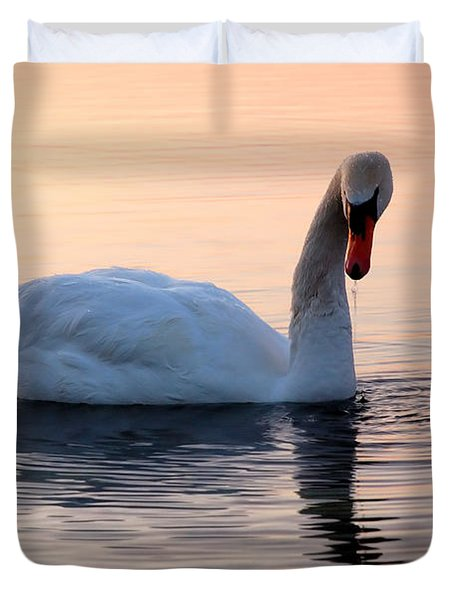Swan Lake  Duvet Cover by Joe  Ng