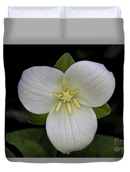 Duvet Cover featuring the photograph Sweet White Trillium by Barbara Bowen
