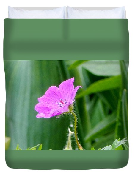Duvet Cover featuring the photograph Sweetness by Betty-Anne McDonald