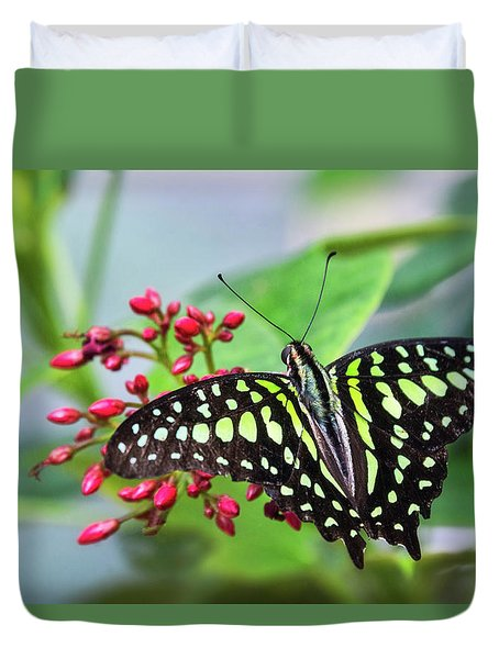 Duvet Cover featuring the photograph Tailed Green Jay Butterfly  by Saija Lehtonen