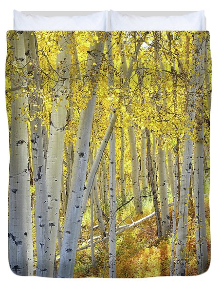 Duvet Cover featuring the photograph Telluride Aspens by Ray Mathis