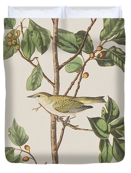 Tennessee Warbler Duvet Cover by John James Audubon