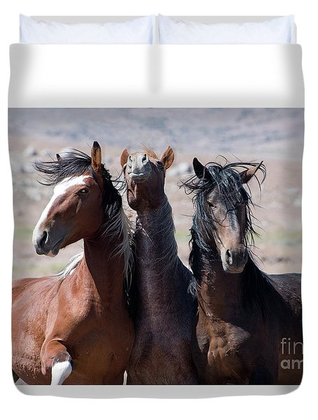 The Boys Duvet Cover by Lula Adams