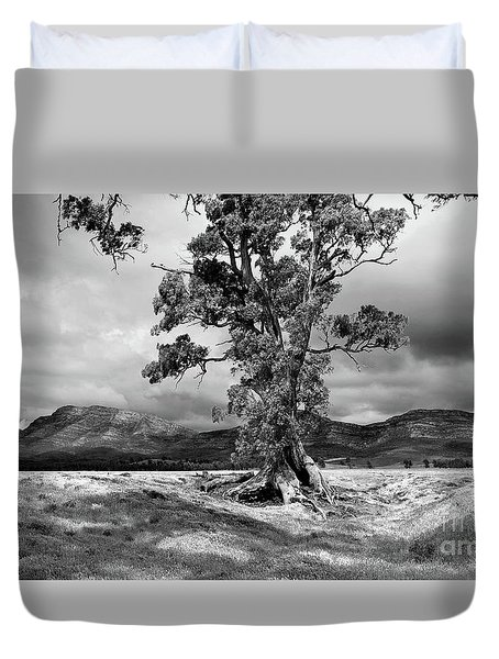 Duvet Cover featuring the photograph The Cazneaux Tree by Bill Robinson