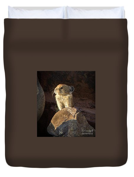 The Coast Is Clear Wildlife Photography By Kaylyn Franks Duvet Cover