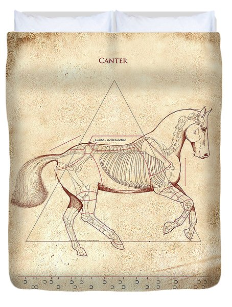 The Horse's Canter Revealed Duvet Cover