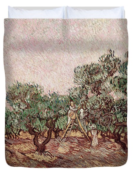 The Olive Pickers Duvet Cover by Vincent van Gogh