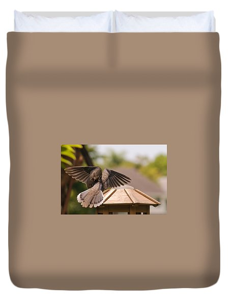 The View From My Window - Mourning Dove Duvet Cover