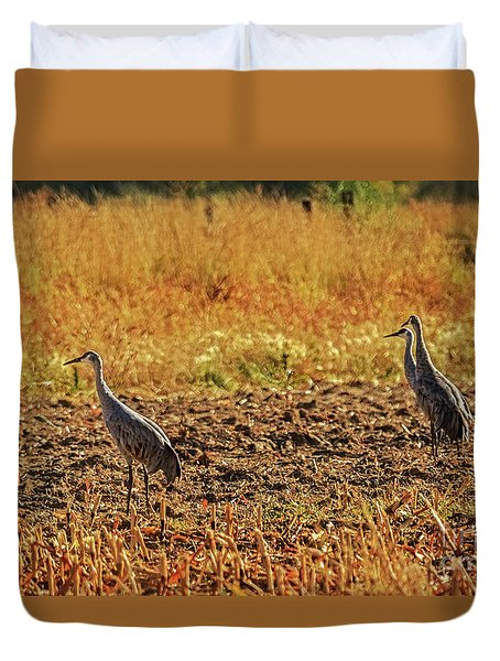 Duvet Cover featuring the photograph Three Amigos by Robert Bales