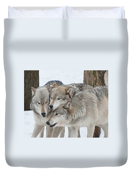 Three Wolves Are A Crowd Duvet Cover