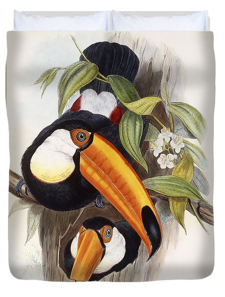 Toucan Duvet Cover by John Gould
