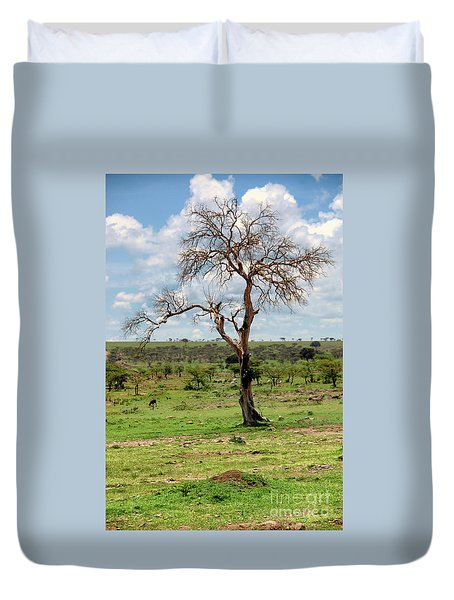 Duvet Cover featuring the photograph Tree by Charuhas Images