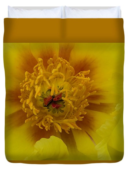 Duvet Cover featuring the photograph Tree Peony by Cathy Donohoue