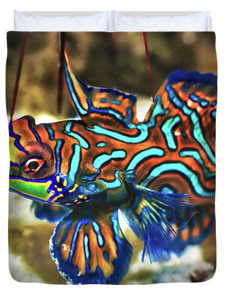 Tropical Fish Mandarinfish Duvet Cover by MotHaiBaPhoto Prints